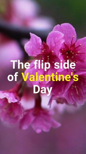 St. Valentine's Day Blog Promotion