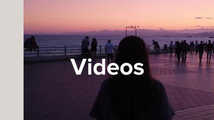 Dynamic Video Ad