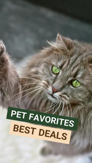 Pet Store Promotion