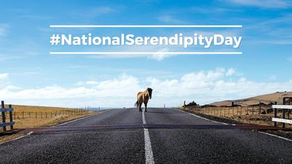 National Serendipity Day