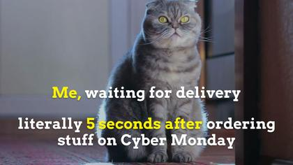 Cyber Monday Delivery Offer