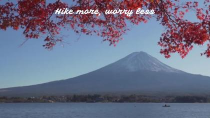 Mount Fuji Scenery