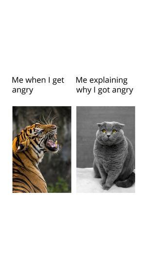 Comparison Meme