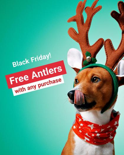 Black Friday - Pets