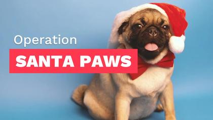 Operation Santa Paws Month