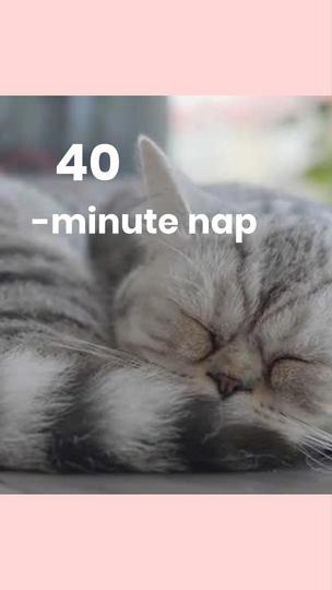 National Napping Day