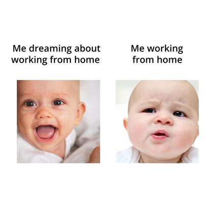 Meme Working from Home