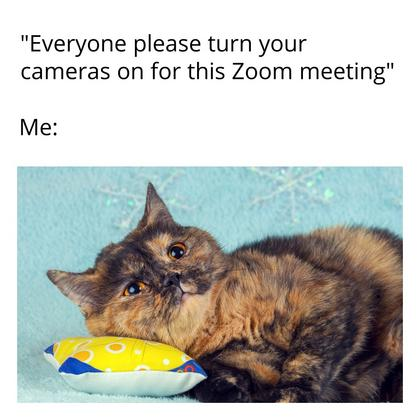 Zoom Meeting Meme