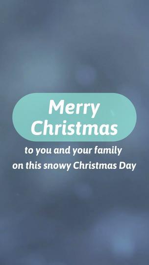 Christmas Promo